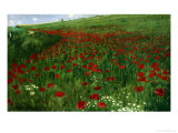 The Poppy Field, 1896 Giclee Print by Paul von Szinyei-Merse