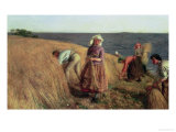 The Harvest Giclee Print by Hugh Cameron