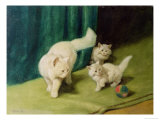White Persian Cat with Two Kittens Giclee Print by Arthur Heyer