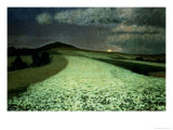 Ripe Wheatfields Premium Giclee Print by August Overbeck