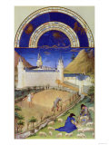 July: Harvesting and Sheep Shearing, by the Limbourg Brothers (Facsimile Manuscript) Giclee Print