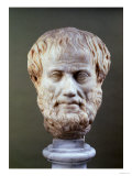 Marble Head of Aristotle (384-322 BC ) Reproduction procédé giclée
