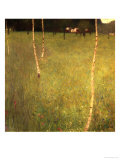 Farmhouse with Birch Trees (Bauenhaus Mit Birken) Giclee Print by Gustav Klimt