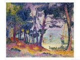 A Pine Grove, 1906 Giclee Print by Henri Edmond Cross