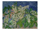 Blossoming Chestnut Branches, c.1890 Giclee Print by Vincent van Gogh