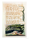 A Poison Tree, from Songs of Experience Giclee Print by William Blake