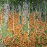 白樺の林 1903 ジクレープリント : グスタフ・クリムト