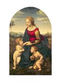 La Belle Jardiniere, 1507 Reproduction procédé giclée par  Raphael