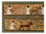 Reaping and Ploughing, Detail from Depiction of Farming Activities in the Afterlife, circa 1250 BC Giclee Print