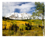 Fall in Colorado Photographic Print by Vic Harshberger
