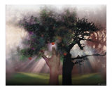 The Tree of Good and Evil Photographic Print by Bill Stephens