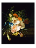 A Carnation, Morning Glory and Other Flowers by Rachel Ruysch Reproduction procédé giclée