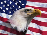 Bald Eagle and American Flag Fotografisk tryk af Joseph Sohm