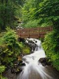 Bridge over Waterfall Photographic Print by Robert Glusic