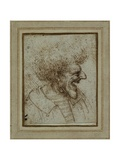 Caricature of a Laughing Man Giclee Print by  Leonardo da Vinci