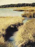 Cape Cod Tidelands Photographic Print by Jennifer Kennard