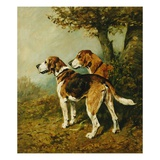 Cossack and Ringwood Giclee Print by John Emms