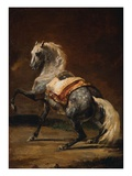 Dappled Grey Horse Giclee Print by Theodore Gericault
