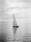 Competitor in Swiftsure International Yacht Race Fotografisk trykk av Ray Krantz