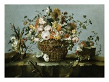 Flowers in a Basket and Flowers, a Sprig of Cherries Giclee Print by Francesco Guardi