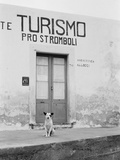 Dog Guarding a Tourist Office Photographic Print by Jerry Cooke