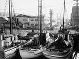 Fishing Boat Sitka and Others Moored at Seattle Docks Photographic Print by Ray Krantz