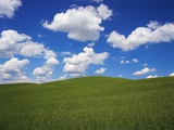 Field of Green under Scattered Clouds Photographic Print by Robert Glusic