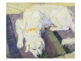 Dog Lying Down (Dog Portrait) Giclee Print by Franz Marc