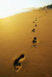 Footprints along Beach Photographic Print by Ron Watts