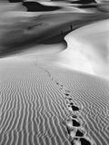 Footprints on Desert Dunes Reprodukcja zdjęcia autor Bettmann