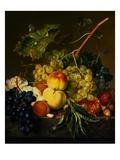 Fruit Still Life on a Marble Ledge by Jan van Huysum Impression giclée