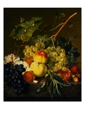 Fruit Still Life on a Marble Ledge by Jan van Huysum Lámina giclée