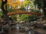 Footbridge over Stream Reproduction photographique par Robert Glusic