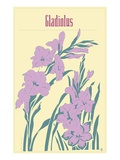 Gladiolus Giclee Print by Steve Collier