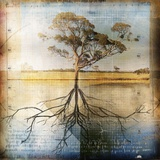 Graph of Tree and Roots Photographic Print by Colin Anderson