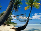 Hammock Hanging Seaside Photographic Print by Randy Faris