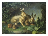 Hares and Leverets in a Rocky Lair Giclee Print by Wenzel Peter