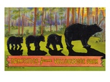 Greetings from Yellowstone Park Giclee Print by  Lake County Museum