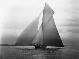 Yacht Iverna a vele spiegate Stampa fotografica