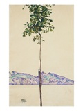 Little Tree (Chestnut Tree at Lake Constance) Impressão giclée por Egon Schiele