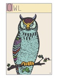 Owl Giclee Print by Steve Collier