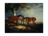 Painting of Horses in a Landscape Giclee Print by John E. Ferneley