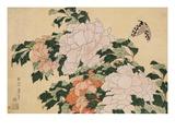 Peonías rosas y rojas a la izquierda en la brisa y una mariposa Lámina giclée por  Hokusai