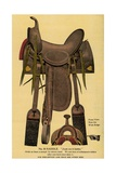 Postcard of a Horse Saddle Giclee Print