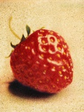 Single Strawberry Photographic Print by Jennifer Kennard