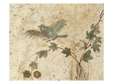 Detail of Roman Fresco Series at Oplonti Villa Reproduction procédé giclée par Mimmo Jodice