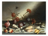 Shells, Plums, Berries, Flowers and Insects Giclée-Druck von Balthasar van der Ast