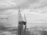 The Maruffa Sailboat in Calm Water Fotografisk trykk av Ray Krantz