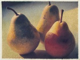 Three Bartlett Pears Photographic Print by Jennifer Kennard