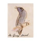The Gray Bird Giclée-Druck von Edward Lear